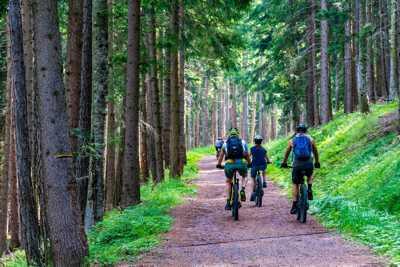 Ideal für Mountainbike Touren und Urlaub ist die Pension Föhrenbacher in Kirchzarten bei Freiburg