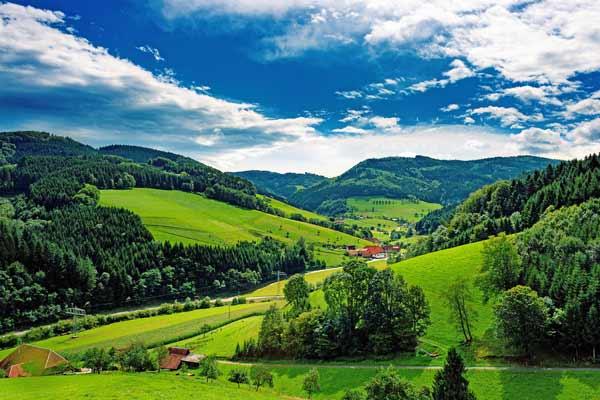 Region Schwarzwald - Föhrenbacher - Kirchzarten - Metzgerei Partyservice Pension